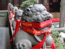 china_16-09-05-10-12-249