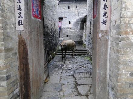 china_16-09-05-10-12-397