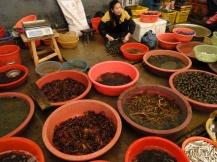 china_16-09-05-10-12-455