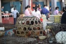china_16-09-05-10-12-464f