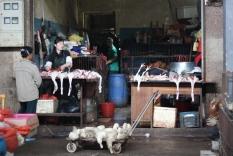 china_16-09-05-10-12-466b