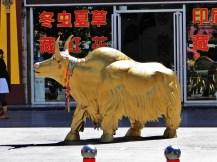 China_16.09.-05.10.12 (742)