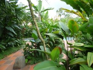 Costa_Rica_00088