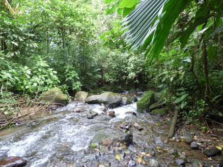 Costa_Rica_00049