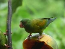 Costa_Rica_00076
