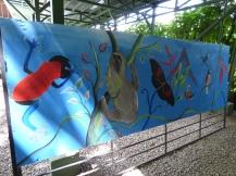 Costa_Rica_00137