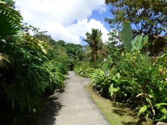 Costa_Rica_00141