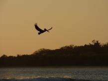 Costa_Rica_00219