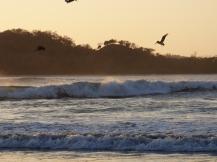 Costa_Rica_00232