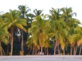 Costa_Rica_00237