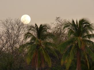 Costa_Rica_00245