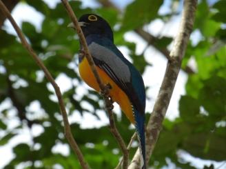 Costa_Rica_00260