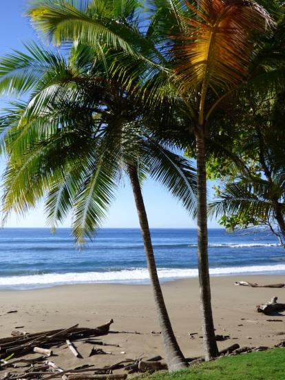 Costa_Rica_00274