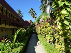 Costa_Rica_00280