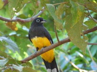 Costa_Rica_00341