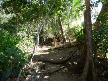 Costa_Rica_00347