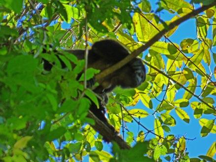 Costa_Rica_00392