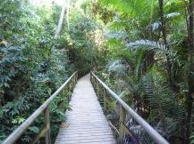 Costa_Rica_00395