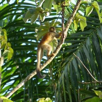 Costa_Rica_00424