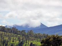 Costa_Rica_00445