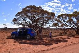 Australien_Blog_00054
