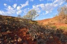 Australien_Blog_00097