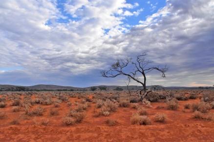 Australien_Blog_00106
